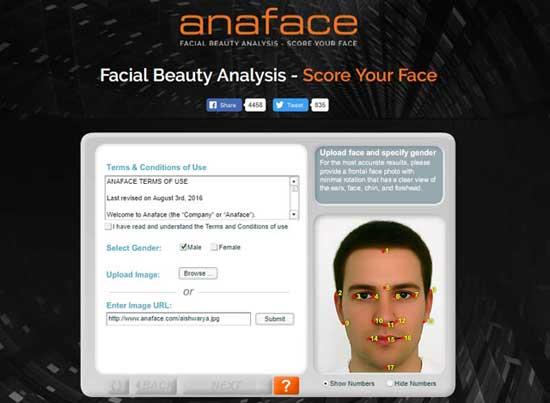 Anaface